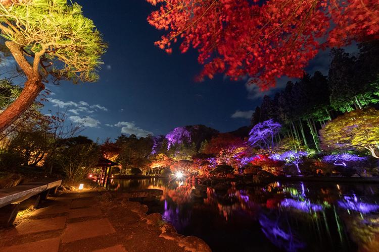 夜の仙台を味わう 紅葉とイルミネーションの幻想的な世界