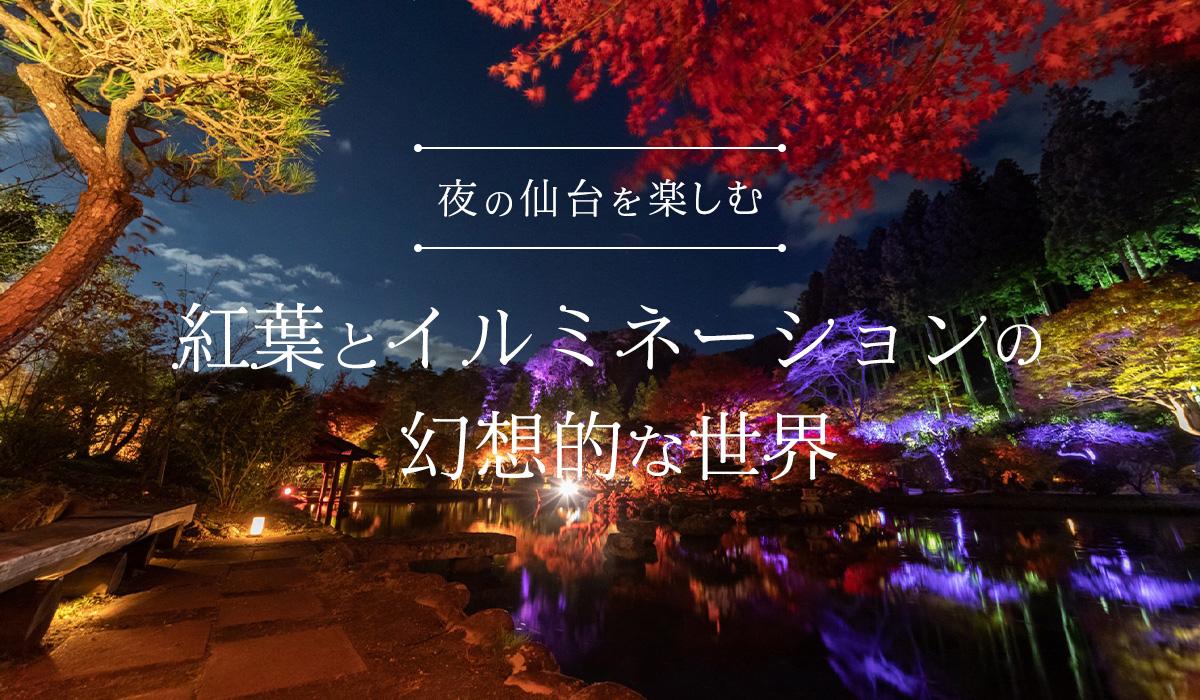 夜の仙台を楽しむ 紅葉とイルミネーションの幻想的な世界
