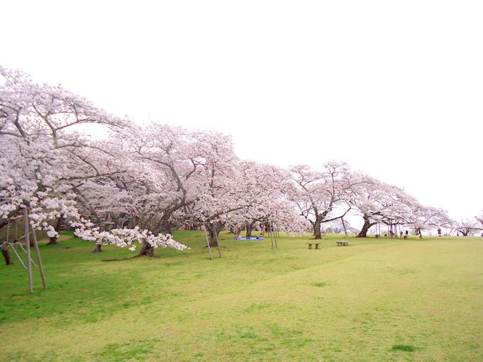 三神峯公園の風景