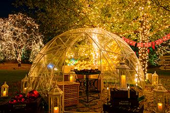 透明なドーム型テントでひかりに囲まれた夕食を。
