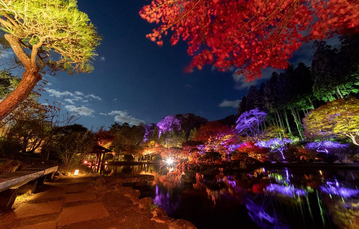 特集:夜の仙台を楽しむ  紅葉とイルミネーションの幻想的な世界
