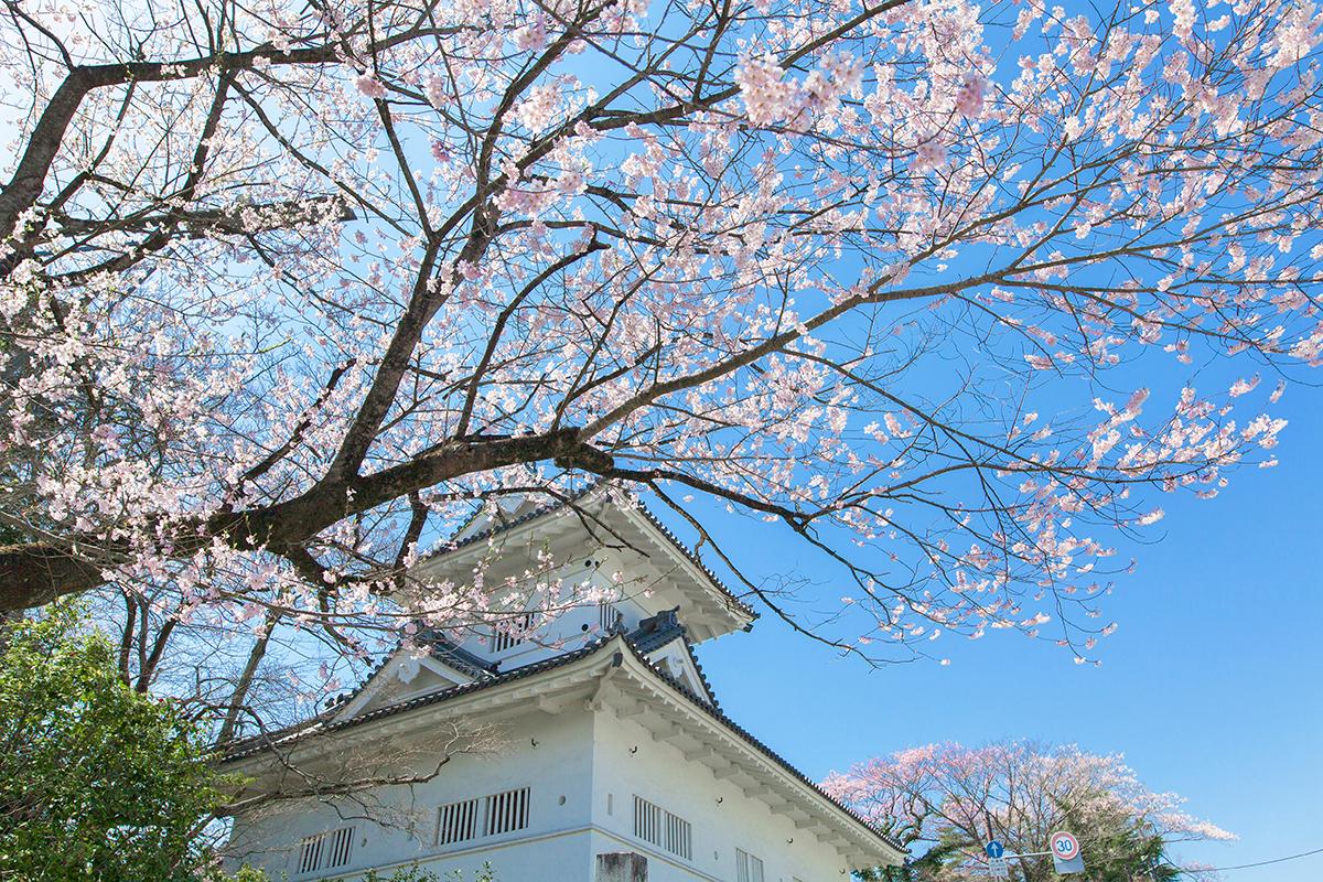 仙台の春の気候
