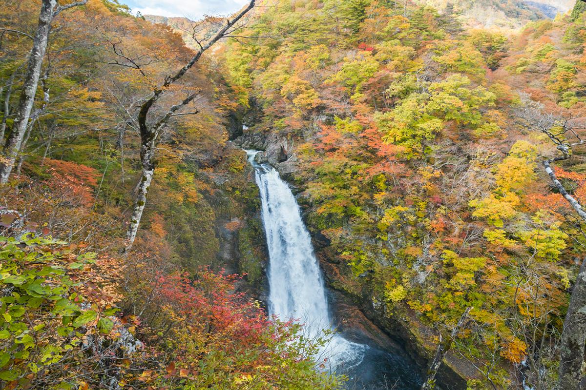 仙台の秋の気候