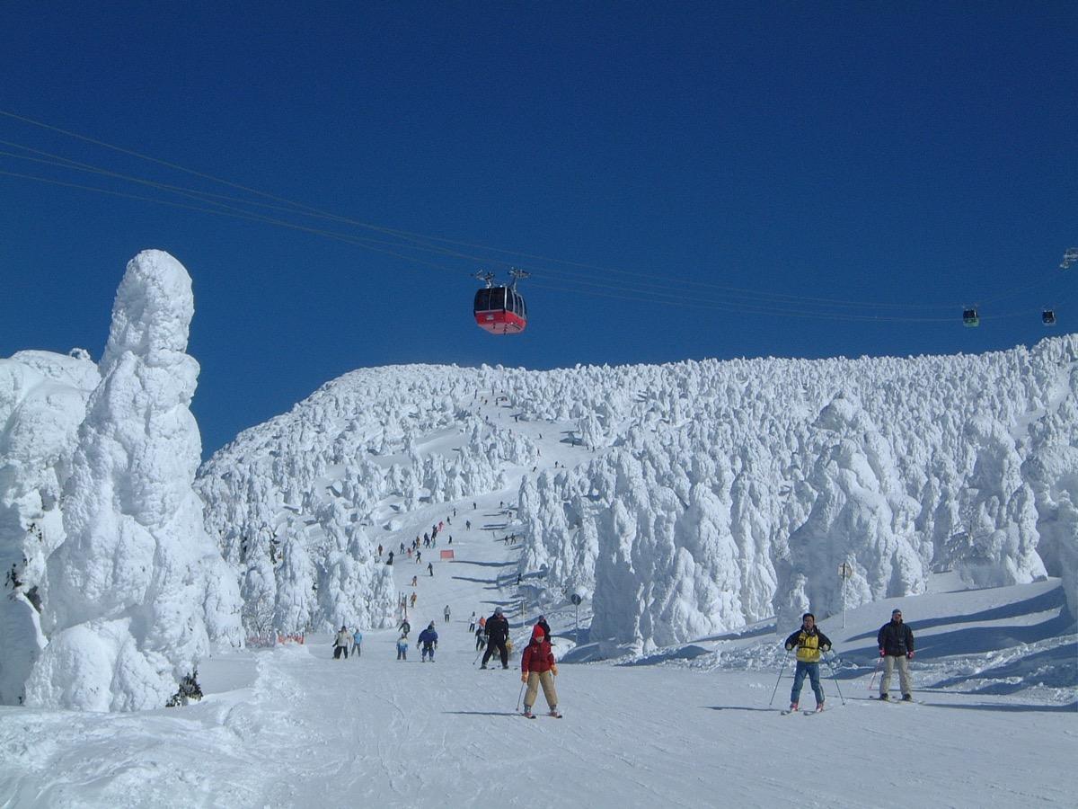 ジャンル:蔵王温泉スキー場