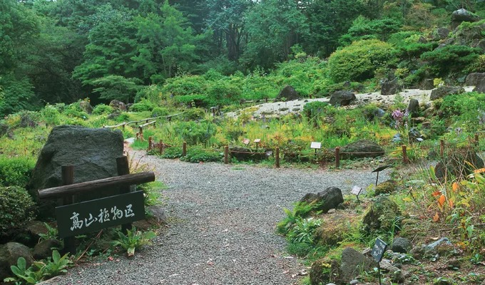 観光スポット:仙台市野草園
