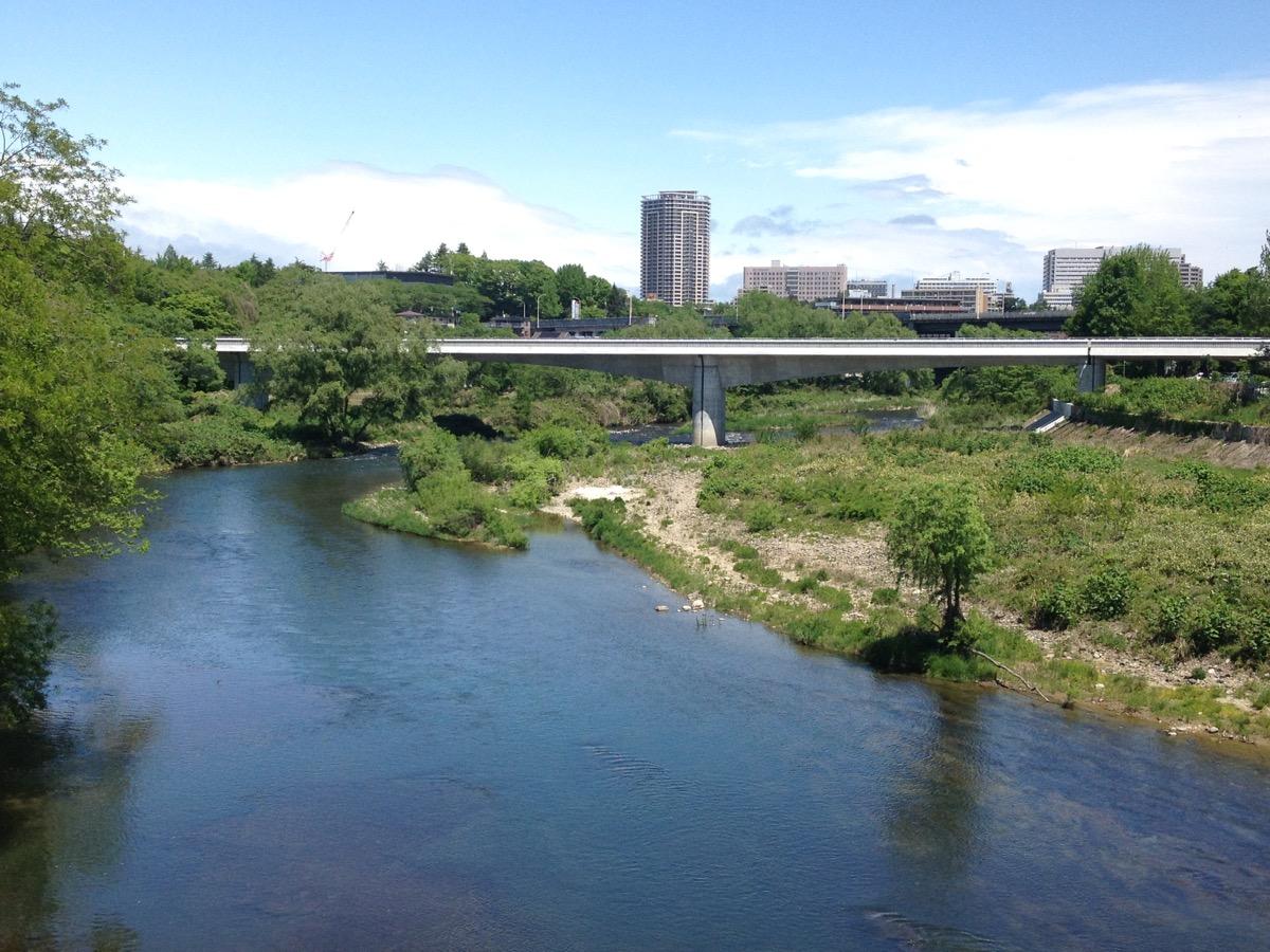 広瀬川橋梁(大橋から撮影/地下鉄「国際センター駅」から徒歩10分)の様子