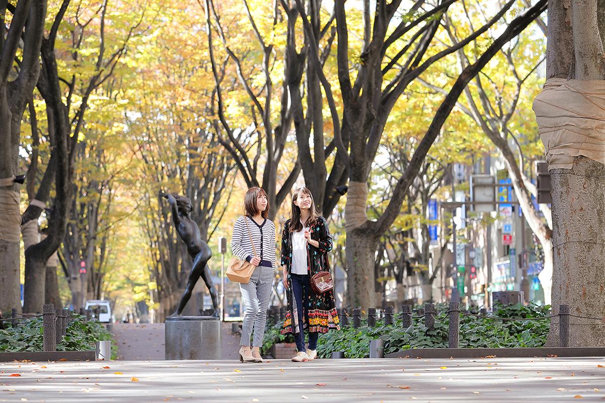 ジャンル:3時間で巡る仙台街なか探訪