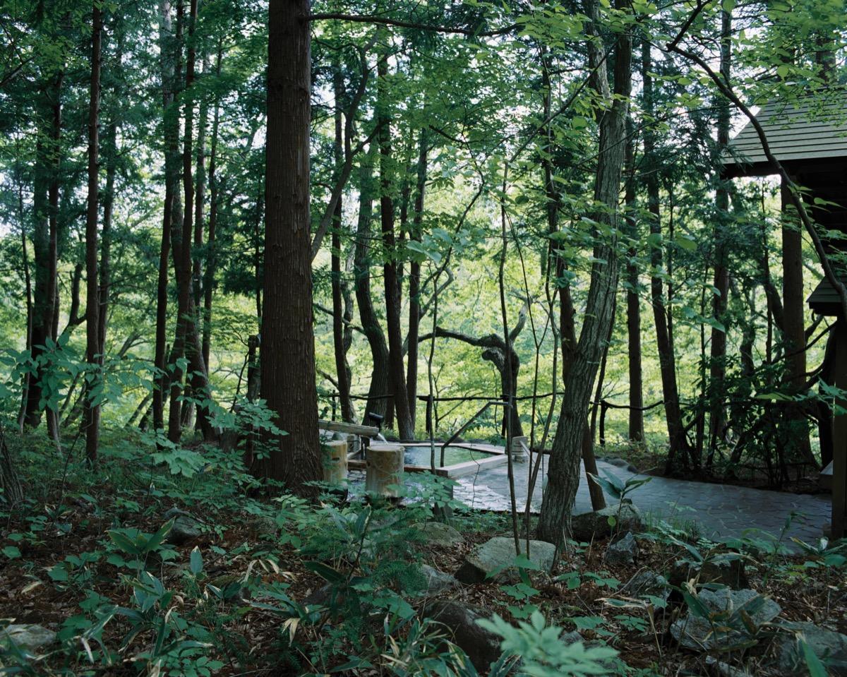 温泉山荘だいこんの花露天風呂