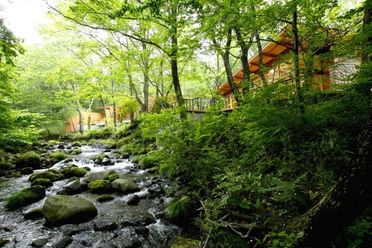 ジャンル:「蔵王の森」がつくる美と健康の温泉宿 ゆと森倶楽部