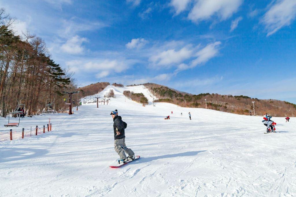 ジャンル:泉ヶ岳スキー場