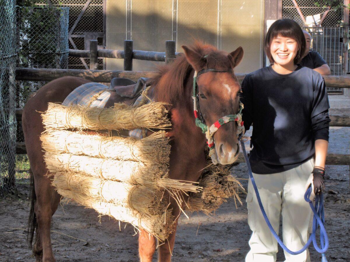イベント:八木山動物公園フジサキの杜「対州馬の春まつり」